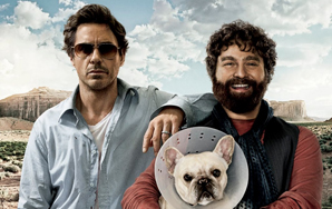 Movie Review: Due Date