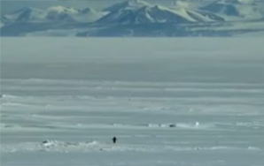 Nihilist Penguin Faces Existential Crisis, Journeys Into The Abyss (And Dies)