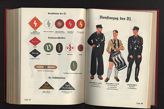 Aesthetics of Hate: The Nazi BrandGuide