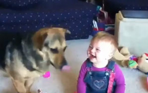 Video of Baby Laughing at Half Speed =Hilarious