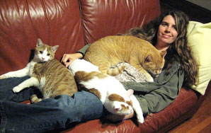 How To Work For A Crazy Cat Lady