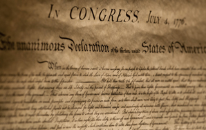 The Single Person's Declaration Of Independence