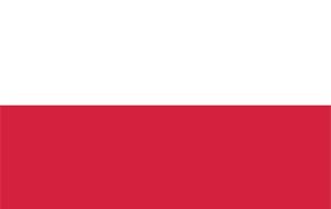 Times When I Feel Polish