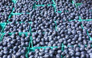 A Fruit Walks Into A FarmersMarket…