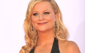 Wife Material, Vol. 6: Amy Poehler