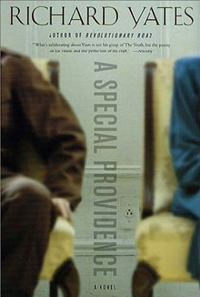 A Special Providence (Vintage Contemporaries)