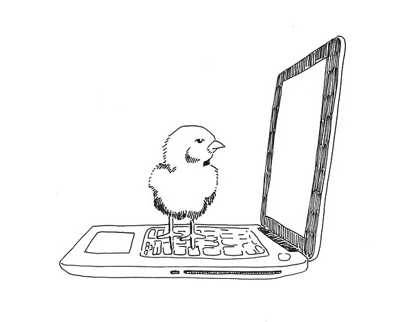 Fairy Tales For 20-Somethings: Chicken Little's Insecurities About Facebook