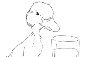 Fairy Tales For 20-Somethings: The Ugly Duckling Sits At A Bar