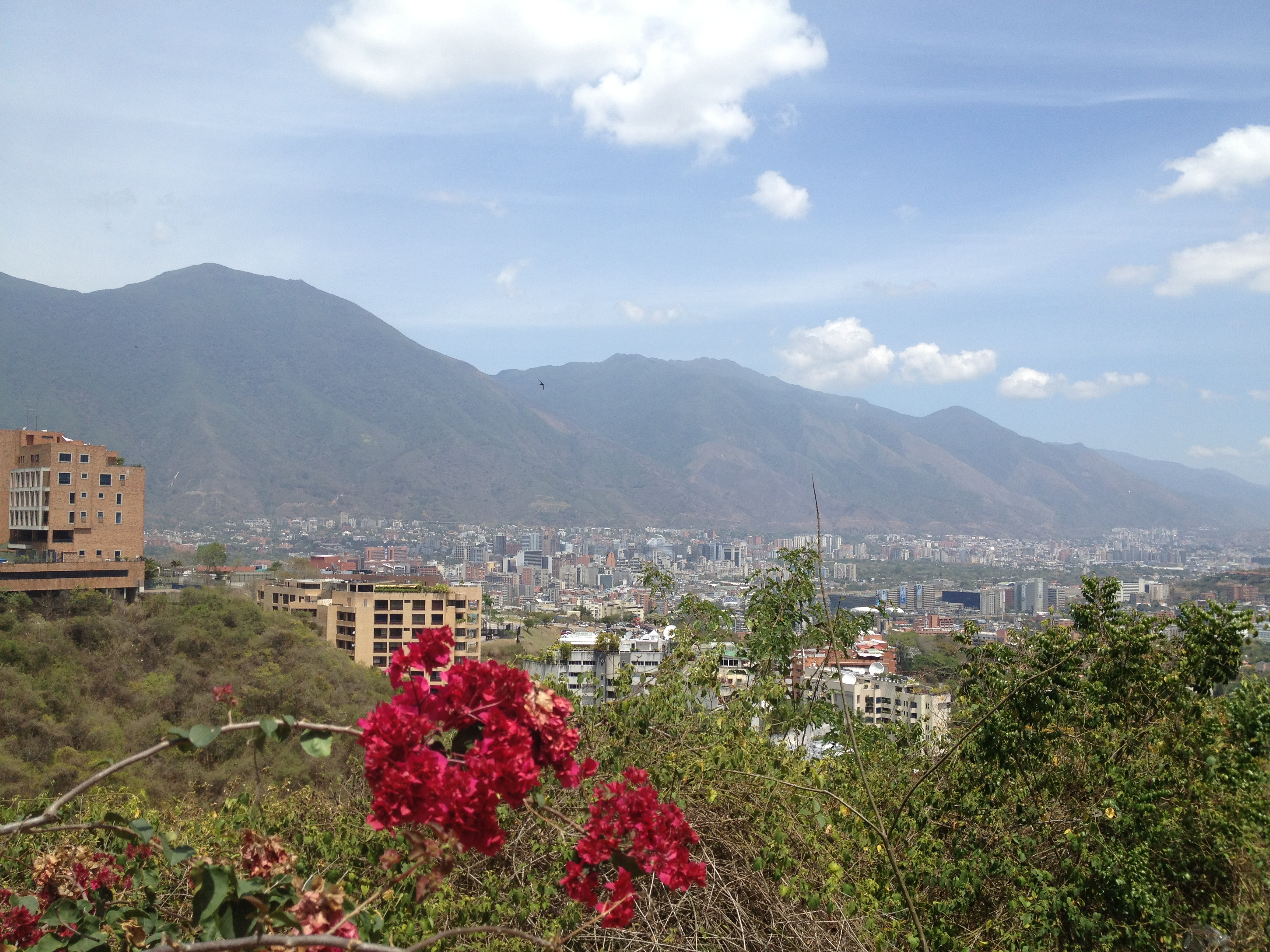 From Caracas: 24 Hours Post-Chavez