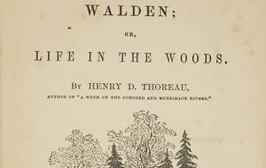 Editor's Comments For Thoreau's 'Walden' Manuscript