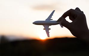7 Terrified FlyerProblems