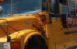 To The Boy Who Molested Me On The SchoolBus
