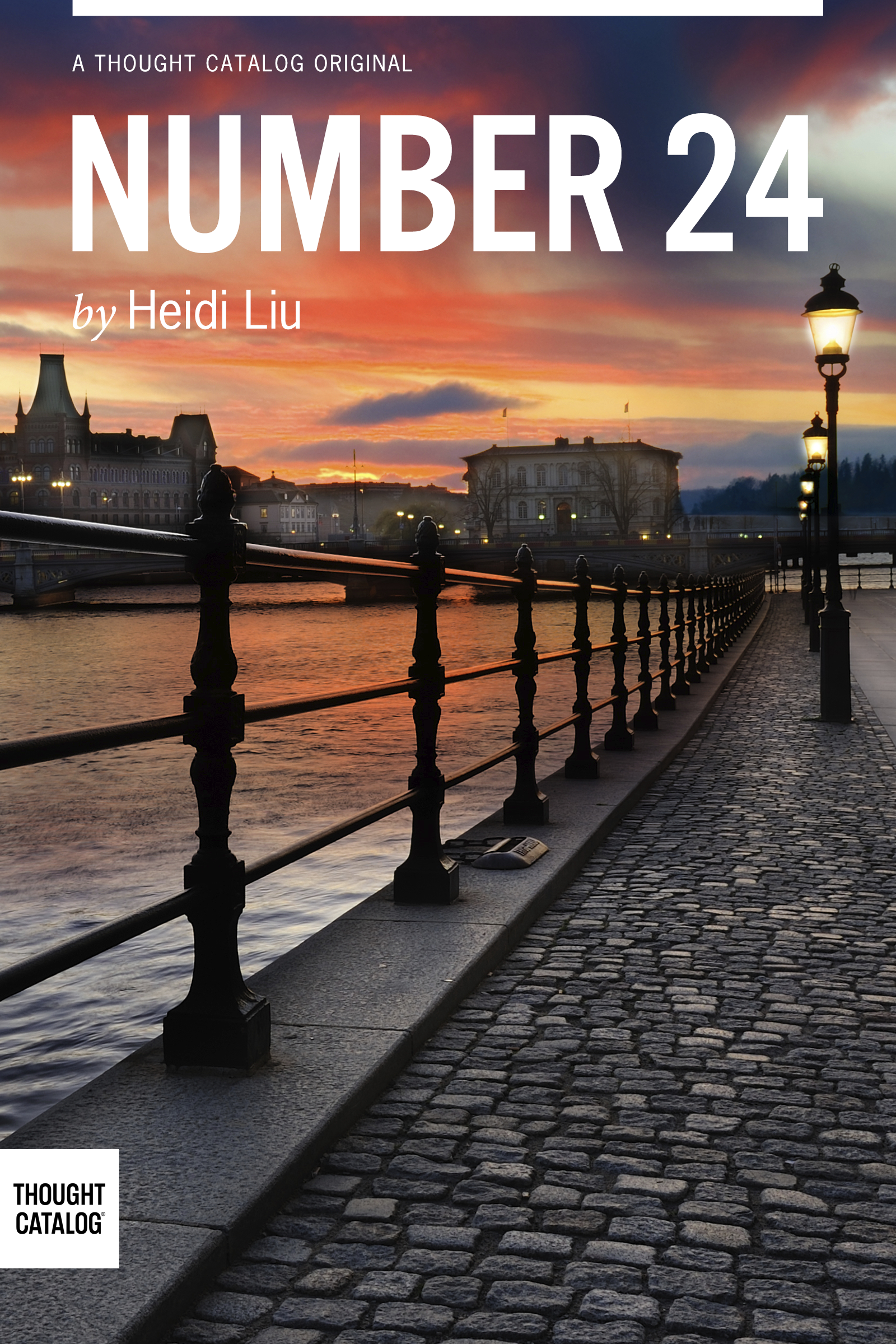 """Heidi Liu's eBook, """"Number 24,"""" is now available on Amazon and in the iBookstore."""