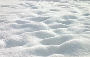 Having Snow
