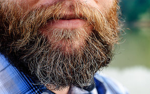 20 Things You Should Know About Beards