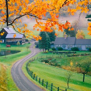 33 Autumn Photographs That Will Remind You How Beautiful The World Is