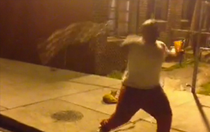 Watch This Twisted Idiot Lure A Cat Over And Throw It 30 Feet Onto Pavement