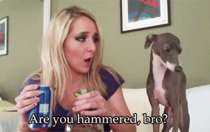 45 Hilariously Relatable Jenna Marbles Quotes That Are Words To Live By