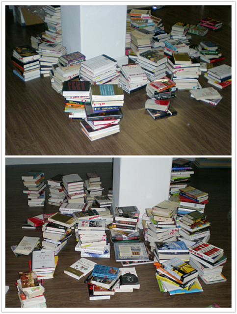 My library (in infancy), mid-move. August 2008. Downtown Los Angeles