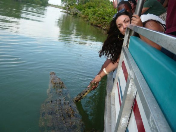 How Shaking Hands With An Alligator ChangesEverything