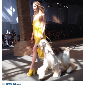 The Funniest Photos From New York Fashion Week 2013
