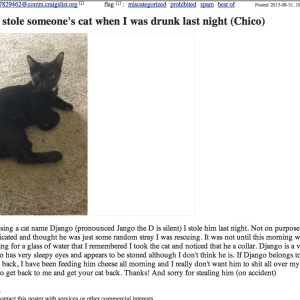 Best Craigslist Ad Of The Week: Possibly Stole Someone's Cat When I Was Drunk Last Night