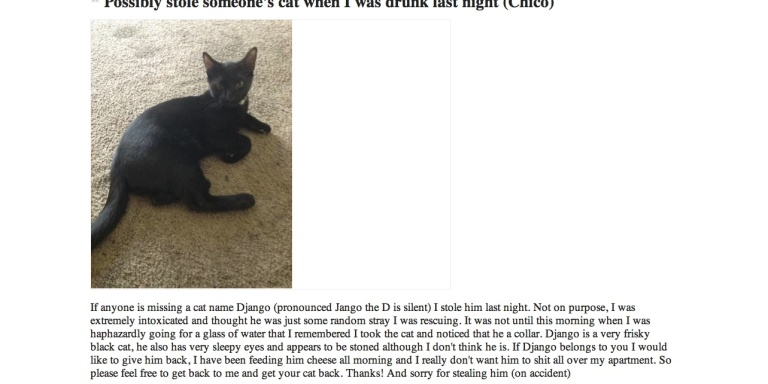 Best Craigslist Ad Of The Week: Possibly Stole Someone's Cat When I Was Drunk LastNight