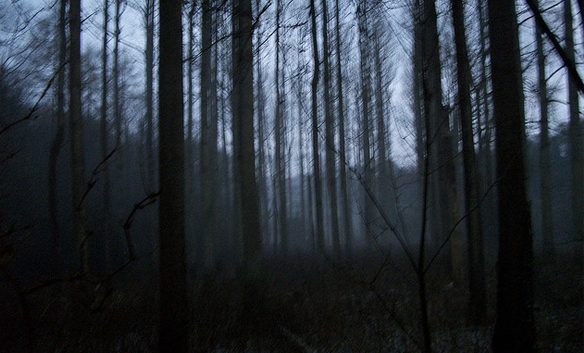 Someone Was Stalking Me In The Middle Of The Night While Camping In TheBackwoods