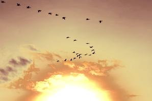 15 Assumptions About Life That You ShouldMake