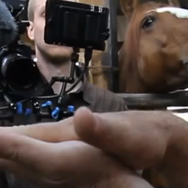 Hey, No More Horsing Around: Watch This Jerk Bother Someone Doing His Job