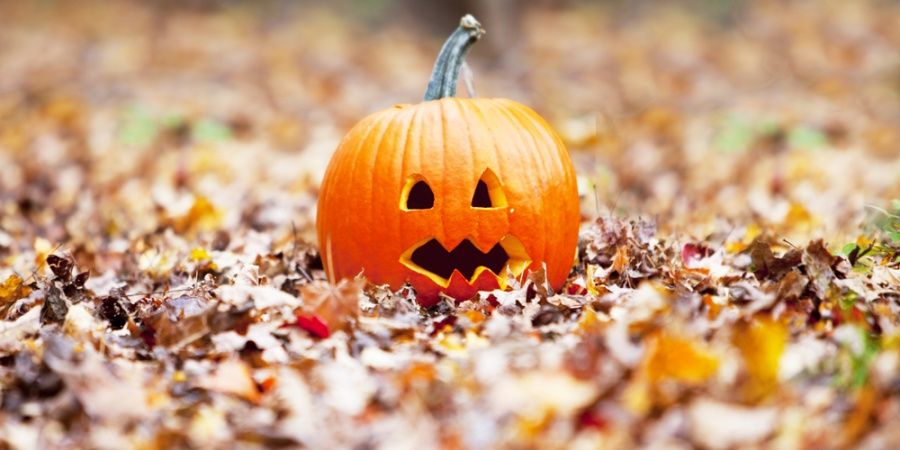 20 Reasons Why Halloween Is Better Than Other Holidays