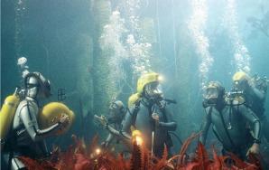 An Undersea Journey