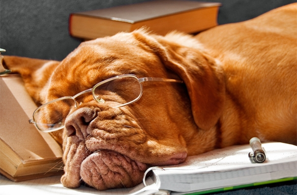 20 Lessons You Learn As An Undergrad