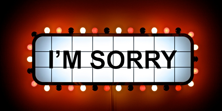 Why Do We Say Sorry?