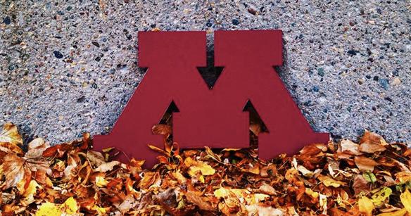 University of Minnesota's Facebook Page