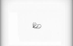A Cat A Day — November 4th