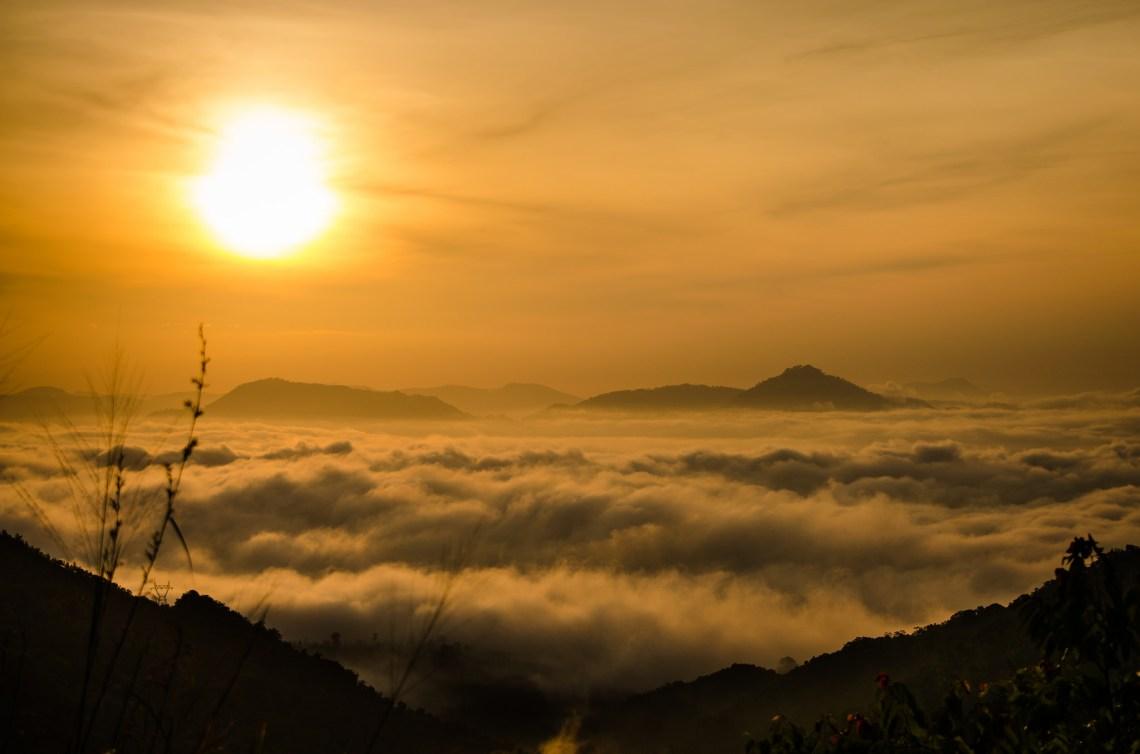 Flickr / uditha wickramanayaka