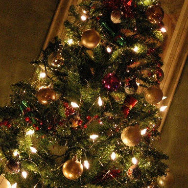 What Your Christmas Tree Says About You