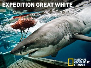 Expedition Great White Season 1