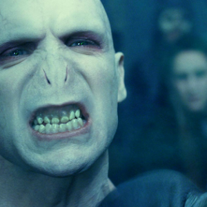 20 Signs Lord Voldemort Is Your Spirit Animal