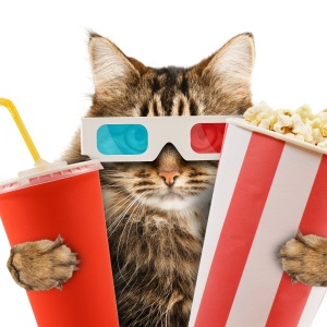 A Comprehensive List Of Recommendations For Your Next Movie Night