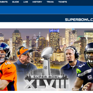 The Non-Fan's Guide To The NFL Playoffs: Part 5, Super Bowl Sunday