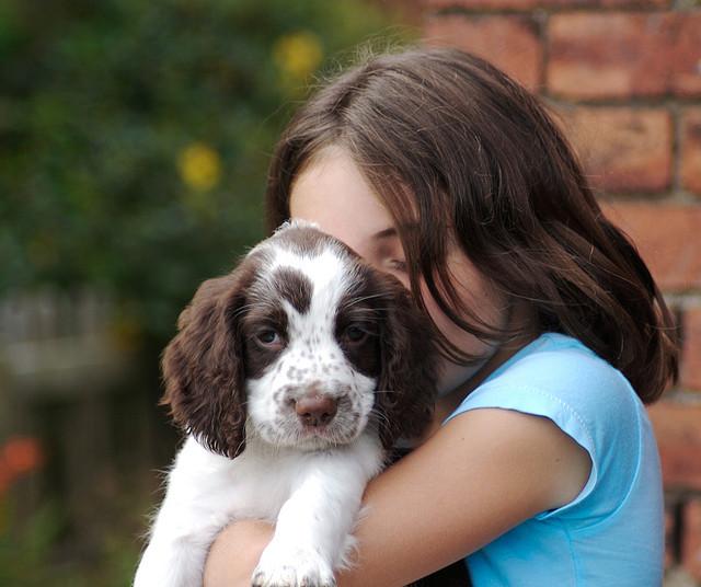 image - Flickr / smlp.co.uk