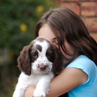 15 Signs You're An Overly Obsessed Dog Lover