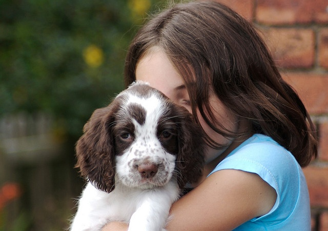 15 Signs You're An Overly Obsessed DogLover