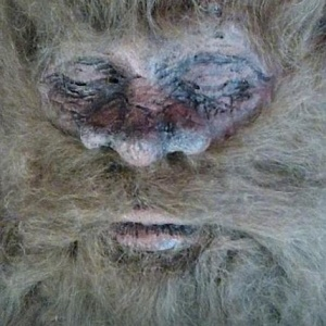 PETA Comes To The Defense Of Bigfoot, Probably Still Want To Be Taken Seriously