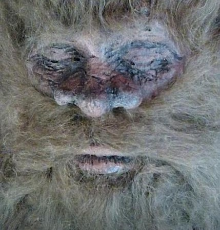 PETA Comes To The Defense Of Bigfoot, Probably Still Want To Be TakenSeriously