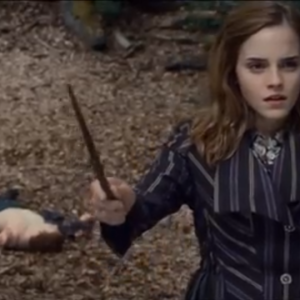 30 Things You Didn't Know About Harry Potter