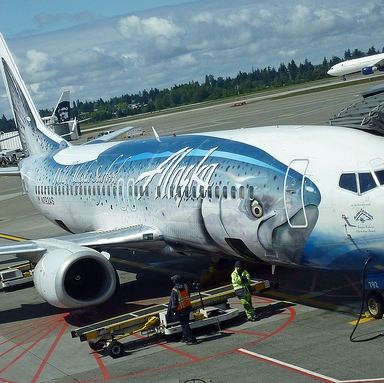 An Open Letter To The Passengers And Crew Of Alaskan Airlines Flight 494