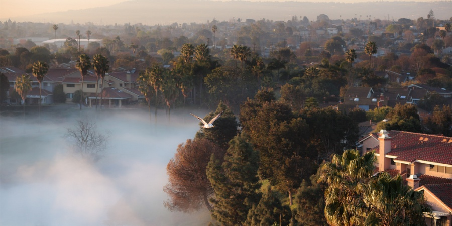 "Loving Los Angeles: 36 Books To Help You Finally ""Get"" LA"